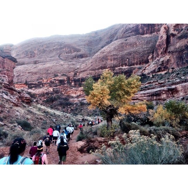 More scenes from yesterday's trail half in Moab. This was the beginning of the 1000 foot climb.... which also spread out all the people!